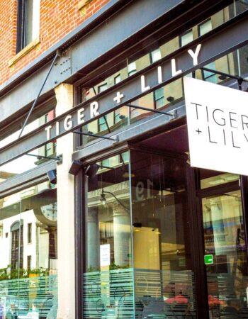 Tiger + Lily